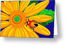 Daisy And Shieldbug Greeting Card