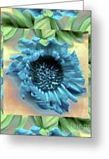 Daisy Blue Frame Greeting Card