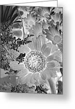 Daisy Bouquet In Black And White Greeting Card