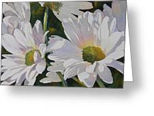 Daisy Bunch Greeting Card by Judy Mercer