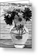 Daisy Crazy Bw Greeting Card