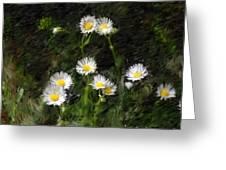 Daisy Day Fantasy Greeting Card