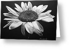 Daisy I Greeting Card