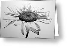 Daisy II Greeting Card