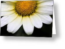 Daisy Smile Greeting Card