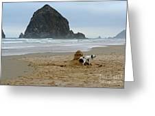 Dalmatian Peeing On Sandcastle Greeting Card
