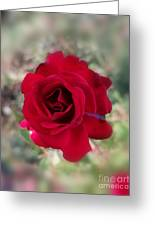 Dame En Rouge Greeting Card