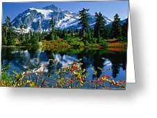 Damian Trevor - Awesome Mountain Tree Nature Landscape Greeting Card