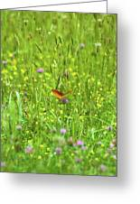 Dancing Among The Flowers Greeting Card