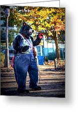 Banjo Beary In Pritchard Park Greeting Card
