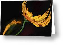 Dancing Flower Greeting Card