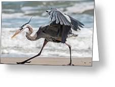Dancing Heron #1/3 Greeting Card