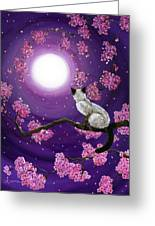 Dancing Pink Petals Greeting Card by Laura Iverson