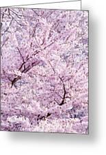 Dancing Sakura Haiku Greeting Card