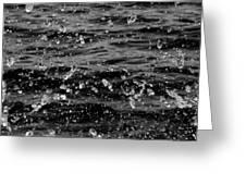 Dancing Water In Black And White Greeting Card