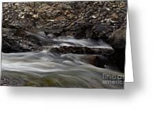 Dancing Waters 5 Greeting Card