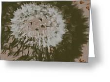Dandelion Emu 3 Greeting Card