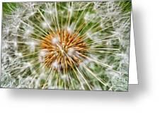 Dandelion Explosion Greeting Card