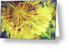 Dandelion Harvest Greeting Card