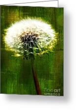Dandelion In Green Greeting Card
