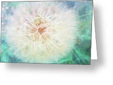 Dandelion In Winter Greeting Card