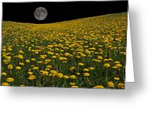 Dandelion Moon Greeting Card