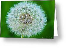 Dandelion Seed Head Expressionist Effect Greeting Card