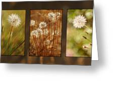 Dandelion Series Greeting Card