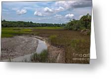 Daniel Island Paradise Greeting Card