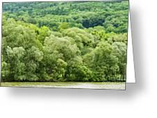 Danube Green Greeting Card
