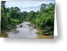 Danum Valley Greeting Card