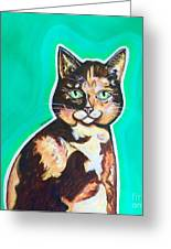 Daphne The Calico Cat Greeting Card