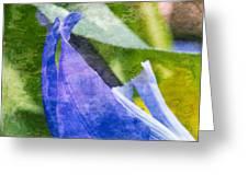 Dappled Petals Greeting Card