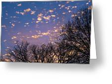Dappled Sunset-1548 Greeting Card