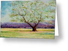 Dapples Apple Tree II Greeting Card