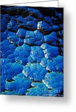 Dark Blue Greeting Card
