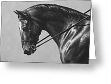 Dark Brown Dressage Horse Black And White Greeting Card