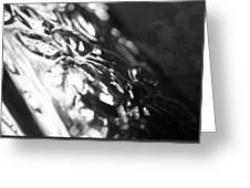 Dark Glass Greeting Card