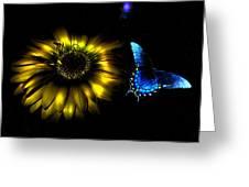 Dark Glow Butterfly Greeting Card