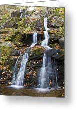Dark Hollow Falls Shenandoah National Park Greeting Card