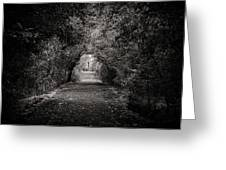 Dark Path In Black And White Greeting Card