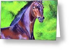 Dark Red Bay Horse Greeting Card