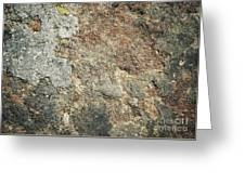 Dark Sandstone Surface With Moss Greeting Card