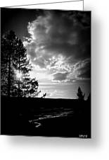 Dark Sunset Greeting Card by Carrie Putz