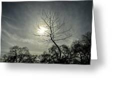 Dark Sunshine Greeting Card