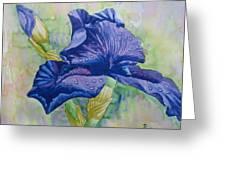 Dark Violet Iris. 2007 Greeting Card
