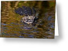 Dark Water Predator Greeting Card