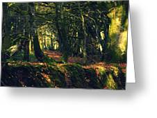 Dark Woods Greeting Card