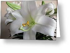 Darn Beautiful Flower Greeting Card