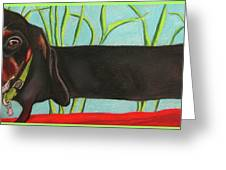 Dash Hound Greeting Card